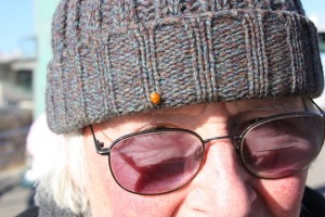 Ladybug finds David